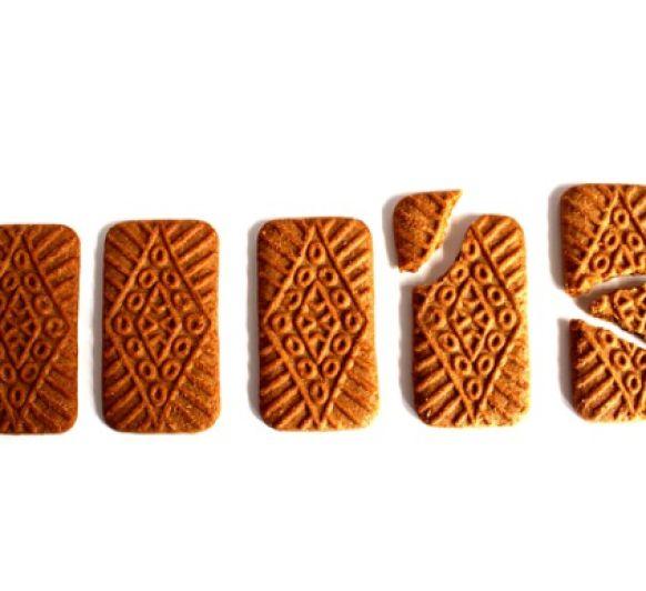 GALLETAS SPECULOOS (galletas tipo LOTUS) con Thermomix®